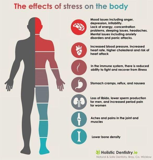 stresshormonen adrenaline cortisol noradrenaline
